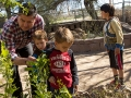 Julian Barcelo,left, a first grade teacher at Davis Bilingual Magnet School points out larvas on a plant to his students, Daniel Mann, center, and Cooper Goffeney, right, inside the school's garden in Tucson, Ariz. on Wednesday, Feb. 25, 2015. Photographed by Noelle Haro-Gomez