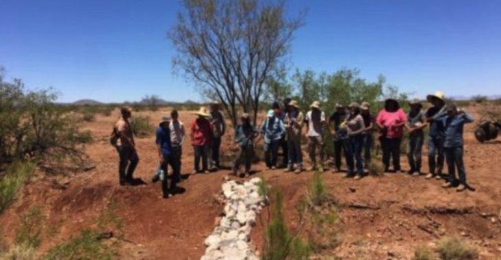 BECY interns restoring an ecosystem. (Photo courtesy of Borderlands Restoration Network).